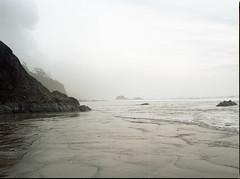 Another one that got away (Kent C.) Tags: mamiyarb67pros film filmphotography oregoncoast fog kodakportra160 mediumformat mediumformatfilm
