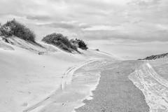 De Zandwoestijn (Pieter Musterd) Tags: duinen pietermusterd musterd canon pmusterdziggonl nederland holland nl canon5dmarkii canon5d denhaag 'sgravenhage thehague lahaye kijkduin hetstillestrand zee noordzee strand