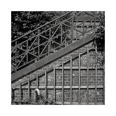Lines (K.Pihl) Tags: cobblestones mediumformat 6x6 blackwhite schwarzweiss rodinal150 stair film dam kodaktrix400 hasselblad500cm monochrome mittelformat pellicolaanalogica park bw distagon50mmf40 analog wall