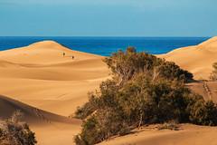Dünen-Wanderung (tan.ja1212_2.0) Tags: gran canaria dünen sand meer himmel natur landschaft bäume menschen dunes sky nature landscape trees people