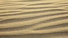 Erde (VillaVitaeHamburg) Tags: sand sandig wüste wüstensand dünen strand gelber sommer spuren urlaub meer wind landschaft wildnis wärme hitze hintergrund sandkorn sandkörner brocken textur trocken trockenheit sierra natur sanddünen düne wüsten wellen muster grancanaria kanaren kanarische inseln maspalomas playadelingles verlauf sonne sonnenuntergang licht schatten abendlicht orange rot lila violett blau erde element spain