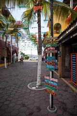 Zihuatanejo Mexico (nan palmero) Tags: mexico guerrero travel sony palmtrees fullframe zihuatanejo zihua visitmexico sonyalpha sonya7riii