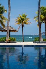 Pool, Palm Trees, Beach at Thompson Zihuatanejo (nan palmero) Tags: hyatt thompsonhotels thompsonzihuatanejohotel sony sonya7riii sonyalpha fullframe zihuatanejo mexico zihua travel visitmexico palmtrees guerrero pacific playalaropa