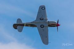 Warhawk Roll (Troy A. Snead) Tags: curtissp40warhawk readingpa warbirds midatlanticairmuseumswwiiweekend midatlanticairmuseum wwiiweekend2019 militaryplanes wwiiaviation