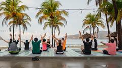 Morning Yoga at Pool, Palm Trees, Beach at Thompson Zihuatanejo (nan palmero) Tags: hyatt thompsonhotels thompsonzihuatanejohotel sony sonya7riii sonyalpha fullframe zihuatanejo mexico zihua yoga travel visitmexico palmtrees guerrero pacific playalaropa