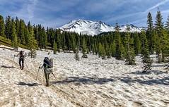Bunny Flat Trailhead on Mount Shasta in California. (lhboudreau) Tags: