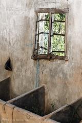 """""""La ventana de Van Gogh"""" / """"Van Gogh's Window"""" (Recesvintus) Tags: cuadras establos urbex decay abandoned stables ruinas ruins rural lamancha recesvintus decadencia ventana window impressionism impresionismo vangogh"""