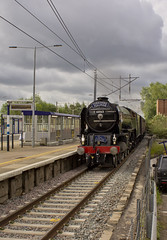 A1 no.60163 'Tornado' (alts1985) Tags: a1 no60163 tornado uk railtours main line steam train the yorkshire pullman knebworth 150619