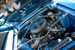 American SpeedFest VII, Brands Hatch June 2019 (Sean Sweeney, UK) Tags: american speedfest americanspeedfest uk nikon cars racing motor sport motorsport 2019 vii americanspeedfestvii msv brands hatch brandshatch d810 whelan euro series nascar kent car auto autos blue engine hood
