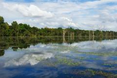Neak Pean (Kelly Renée) Tags: cambodia neakpean preahneakpean seasia siemreap southeastasia clouds flooded landscape nopeople reflection sky tranquil tranquility travel traveldestination water siemreapprovince