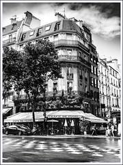 café parisien le Flore (pileath) Tags: bw paris le flore streetphoto urban immeuble cafe saintgermaindespres