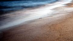 3D_GSW00293 (blende2006) Tags: horizonte zingst dars sonnenuntergang meer strand langzeitaufnahme landschaft sony a7mk2