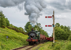 Tanfield Railway 14-6-2019 (KS Railway Gallery) Tags: tanfield railway legends industry gala uk terrace junction gwr no12