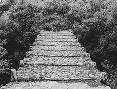 Forest stairway #statues #forest #blackandwhite #rocks #water #leaves #greece #kastoria #nikon #d3300 #lightroom #adobe #photoshop @lightroom @photoshop @adobe #visualsofgreece #water #weeds #plants #naturephotography #nature (paulmpts_photography) Tags: ifttt instagram forest stairway statues blackandwhite rocks water leaves greece kastoria nikon d3300 lightroom adobe photoshop visualsofgreece weeds plants naturephotography nature