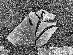 Broken (Michael-Prietz) Tags: schwarzweis zerstört glas bw blackandwhite sw münchen bayern deutschland