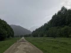 Drumul forestier Bârsa Fierului