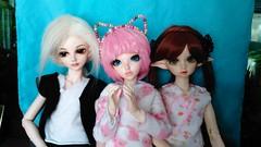 Jonathan, Shelby and Maple (KMissy88) Tags: bjd dolls abjd minifee msd toys pinkhair 14bjd stilllife