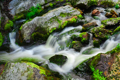Colours of nature (klausrxt) Tags: water stones nature