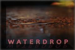 Waterdrop (lotharmeyer) Tags: foto grafik design art kubismus moderne colors farben abstrakt style extrem bunt impressionen elipse kreis green red blue orange lotharmeyer nikon water spiegelung typografie neon makro