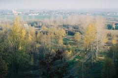 (kotmariusz) Tags: lansdcape poland trees fuji color analog 35mm filmphotography exa1b polska krajobraz modliszów modliszow światło
