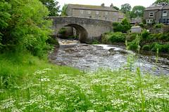 River Ure (Wensleydale) Yore Bridge outside the village of Bainbridge (Adam Swaine) Tags: yorkshire northeast northyorkshire rural ruralkent river rivers englishrivers village villages england english englishvillages uk ukcounties ukvillages britain british nature flora bridges