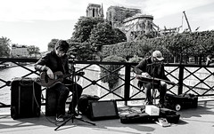dedicated to Notre Dame (Franco-Iannello) Tags: notredameparis streetphotography blackwhite blackandwhite streetartist