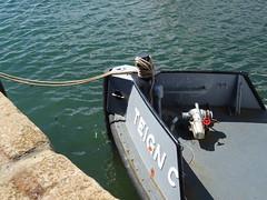 Teign C (THC) (MMSI: 235082804) 14m Damen Stan Tug / dredge bed leveller, with limited fire fighting capacity. Call Sign:  MWBM9 (guyfogwill) Tags: 2019 abp associatedbritishports backbeach bateau bateaux boat boats coastal coastline devon dredger dschx60 england flicker fogwill gb gbr greatbritan guy guyfogwill harbour june marine maritime mmsi235082804 mwbm9 nautical newquay port river riverteign shaldon sony southwest spring teignc teignestuary teignbridge teignmouth teignmouthapproaches teignmouthharbourcommission tq14 tug tugboat uk unitedkingdom vessel workboat photo interesting absorbing engrossing fascinating riveting gripping compelling compulsive