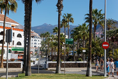 Los Cristianos, Tenerife, Canary Islands (wildhareuk) Tags: canaryislands canon canoneos500d palmtree people spain street tamron18270mm tenerife tenerife2019 loscristianos tamron img9396dxo