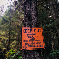 keep out (rick.onorato) Tags: alaska forest keep out sign trespass