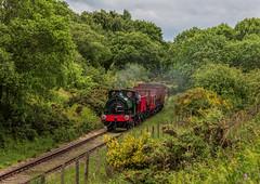 Tanfield Railway 15-6-2019 (KS Railway Gallery) Tags: tanfield railway legends industry gala uk steam cochrane bowes bridge