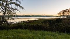 Landscape at Inverness (soundstruck) Tags: landscape inverness pointreyesnationalseashore