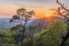 Sunset on Elbe sandstone mountains (Petra Schneider photography) Tags: waitzdorferaussicht elbsandsteingebirge sächsischeschweiz saxony saxonswitzerland sachsen sunset sonnenuntergang nationalpark elbesandstonemoutains