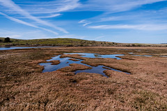 Views of Drake's Estero (soundstruck) Tags: landscape drakesestero pointreyesnationalseashore