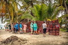 Shopping on the Beach (helenehoffman) Tags: palms gunayala coconut textile islands indigenous safarivoyager uncruiseadventures costaricapanama2019 ocean reverseapplique art sanblasislands panama mola caribbean palmtree molas sanblas