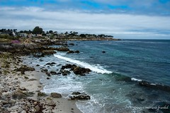 From Lover's Point (marlene frankel) Tags: california seascape beach montereycounty pacificgrove loverspointbeach northernca