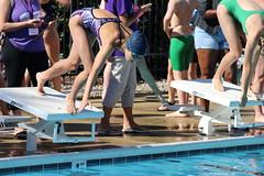 hippos vs brightleaf park (Thomas H. Wilson) Tags: hippos 2019 hardscrabble swim dssl