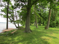Gun Lake shore (creed_400) Tags: gunlake west michigan lake fresh water spring june shore