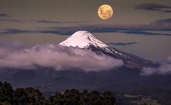 Vulcão Osorno ao luar (Carlos Ed Goulart) Tags: osornovulcan osorno chile patagonia expedição landscape paisagem