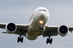 A6-EPN B777-31H/ER Emirates (kw2p) Tags: a6epn aircraft airlineoperator airport aviation b77731her boeing egpf emirates airline aeroplane airplane flying flight kw2p scotland canon canon7dmkii 7dmkii gaaec glasgowairport egpfgla