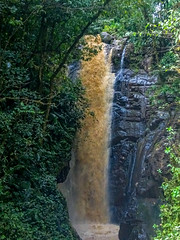 """El Tigre (Antonio Chávez S.S.) Tags: waterfalls waterfall selva jungle """"selva alta"""" central perú"""" pasco oxapampa perú """"mountain forest"""" amazonia trekking forest river landscape fall outdoors excursion nature water jungles sony amazonforest"""