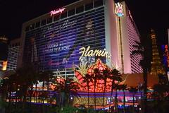 Flamingo Hotel (Randy Gardner 88) Tags: lasvegas nevada night flamingo parislasvegas bellagio lasvegasnevada thestrip strip southlasvegasboulevard