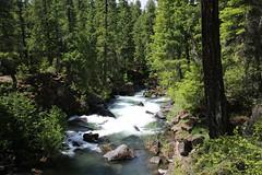 AU3A2248 (MegachromeImages) Tags: natural bridge rogue river or oregon basalt lava rock gorge
