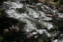 AU3A2340 (MegachromeImages) Tags: rogue river or oregon gorge basalt lava rock tree water