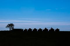 Badlands farm South Dakota (Dave Hallock) Tags: davehallock hallock nikond7100 nikon d7100 sd southdakota west badlands farm shadow sky prarie midwest uppermidwest grasslands landscape blue bluehour tree trees barn silo corn cloud clouds