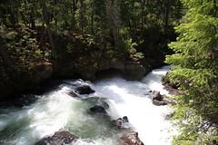AU3A2242 (MegachromeImages) Tags: natural bridge rogue river or oregon basalt lava rock gorge