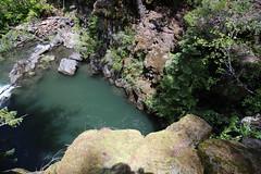 AU3A2336 (MegachromeImages) Tags: rogue river or oregon gorge basalt lava rock tree water