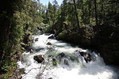 AU3A2213 (MegachromeImages) Tags: natural bridge rogue river or oregon basalt lava rock gorge