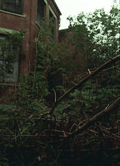 Westborough State Hospital (robbiemaynardcreates) Tags: westborough state hospital abandoned urbex urban exploration robbie maynard creates massachusetts insane asylum lyman school cafeteria sunrise sunset fall 2018 dew glass nature laundry room demolition demolished lab first roll 35mm film camera minolta 7000