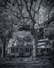 Gingerbread Cottage and Tree (Joe Szalay) Tags: marthasvineyards victorian architecture tree blackwhite bw spring clouds landscape
