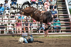 Innisfail Pro Rodeo 2019 (tallhuskymike) Tags: innisfail rodeo event cowboy 2019 prorodeo horse alberta western action outdoors jackdaines dainesranch